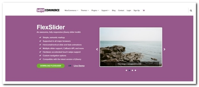 Rx] How to Setup FlexSlider – DevelopRx